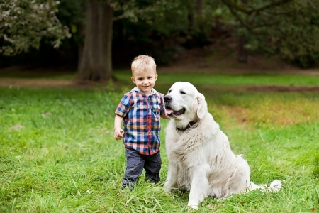 18 months old boy with his dog golden retriever at park photo