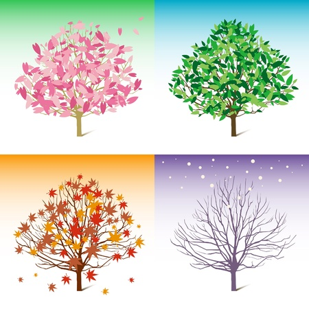 four season: spring, summer, winter, autumn  Illustration