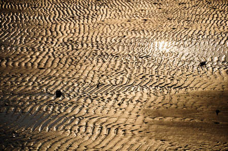 Golden sand in thailand , samet island photo