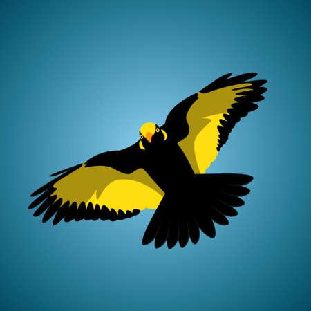 tropica: Flying Tropica Bird vector iilustration