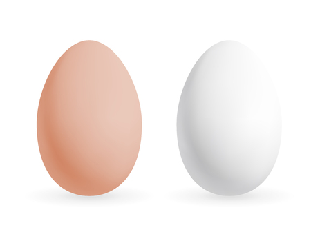 Realistic chicken egg set. Brown and white eggs. Isolated vector mockup. Easter concept.
