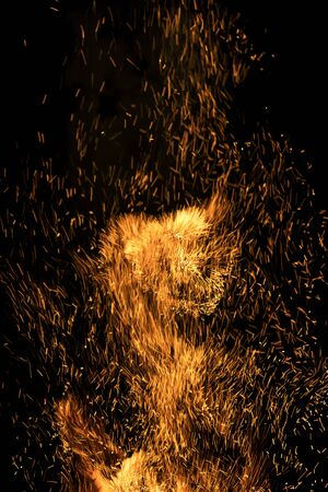 Many sparks from the fire fly up on a black background