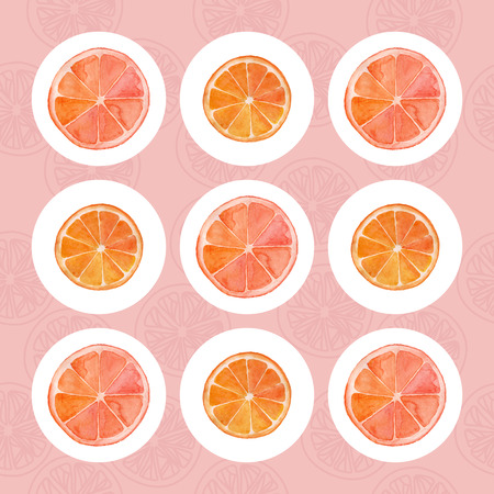 grapefruit: Grapefruit and orange slices on a white circled