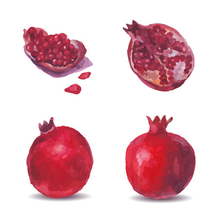 Picture a pomegranate, half and quartered and grain on a white background. Can be used for flyers, menus, packaging. Ambience realistic watercolor image of a pomegranate. Vector Vectores