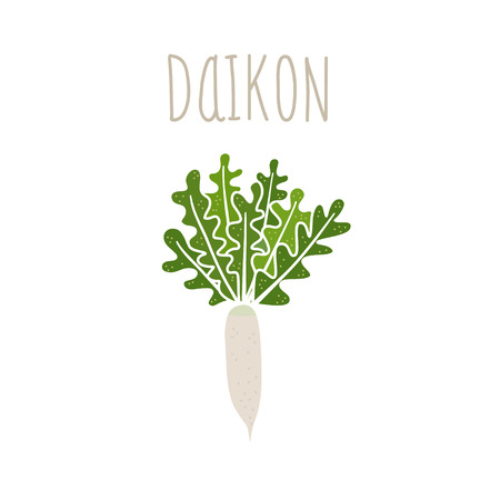 Vector hand drawn isolated daikon with the inscription. Healthy lifestyle. Eco friendly