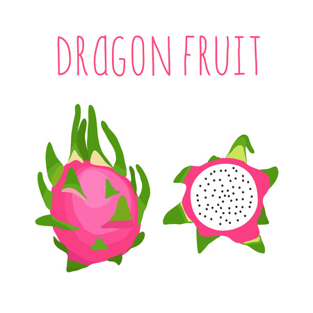 dragon fruit: Vector hand drawn isolated dragon fruit with the inscription. Healthy lifestyle card. Eco friendly Illustration