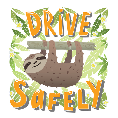 safely: Drive safely - unique hand drawn lettering. Great design for poster. Sloth hanging on a branch in the leaves of trees.