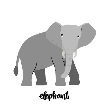 Animal elephant isolated on white background. Beautiful animal print for home decor, card, mug, brochures, poster, t-shirts etc. Modern vector illustration. Illustration