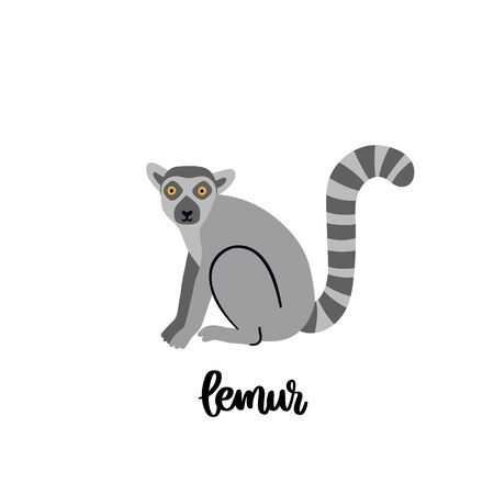 Animal lemur isolated on white background. Beautiful animal print for home decor, card, mug, brochures, poster, t-shirts etc. Modern vector illustration.