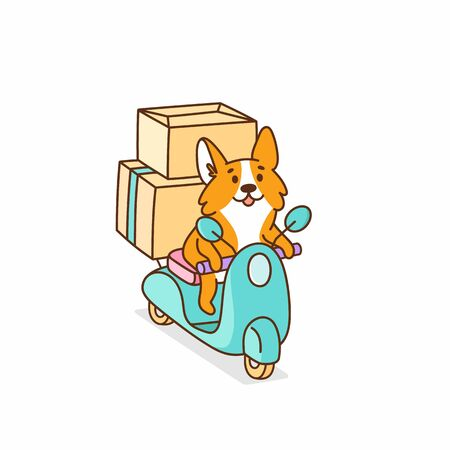 Welsh corgi dog rides on a motobike, with cardboard boxes. It can be used for card, brochures, poster, sticker etc. Vector image isolated on white background. Illustration