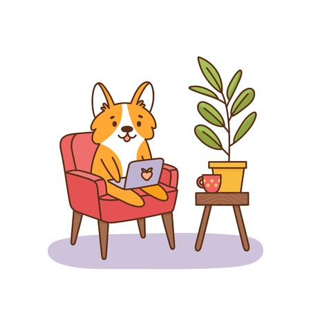 Welsh corgi dog sitting on a chair with a laptop, working at home. It can be used for card, brochures, poster, sticker etc. Vector image isolated on white background. Illustration