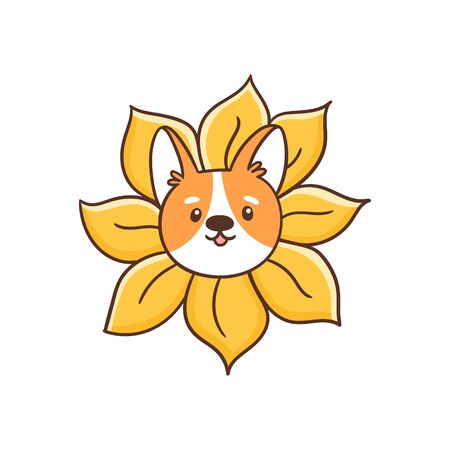 Welsh corgi dog peeks out of a sunflower. Cute vector image isolated on white background. It can be used for card, brochures, poster, sticker etc.