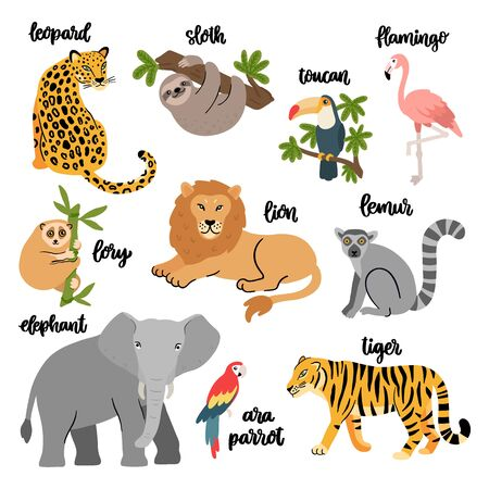 Set of wild exotic animals and birds living in savannah or tropical jungle. Vector illustration isolated on white background.