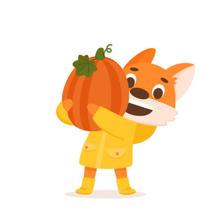 Adorable fox farmer in yellow raincoat with pumpkin. Beautiful character design for Fall season party, Harvest festival or Thanksgiving day. Colorful vector illustration isolated on white background. Illusztráció