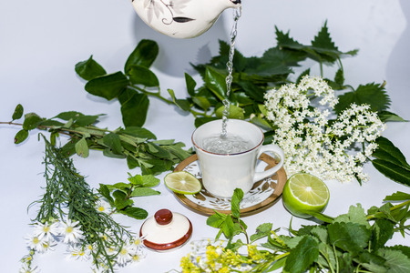WELL WITH AROMATIC WATER SURROUNDED BY MEDICINAL HERBS ANN LEMON