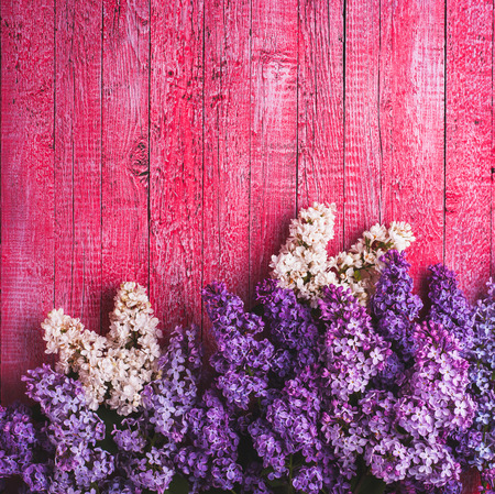 Various lilac on pink wooden background photo
