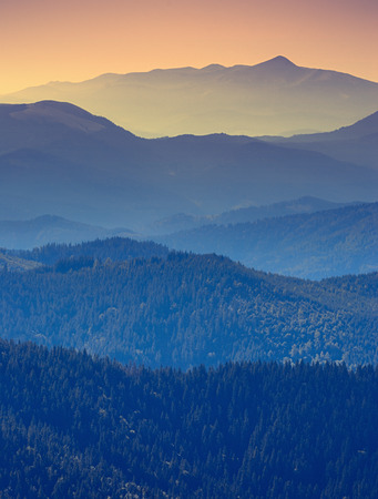 background the nature: Vintage foggy mountain valley