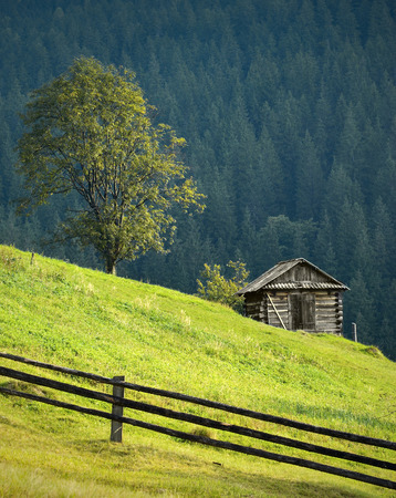 wooden house: Carpatian mountain landscape with lonely wooden house under the tree