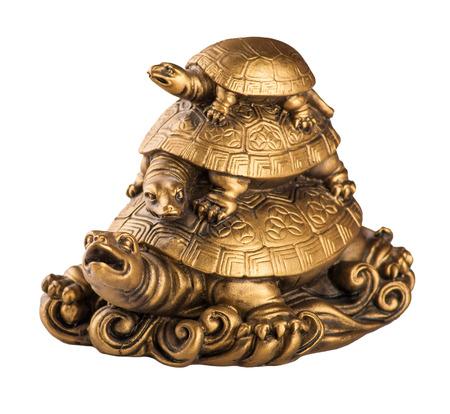 Or fengshui tortues isolé sur fond blanc Banque d'images - 40623094