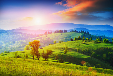 colorful sunrise: Early morning in a Carpathian valley with green meadow and colorful clouds in beautiful light of sunrise