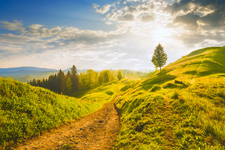 fall sunrise: Early morning in a Carpathian valley with beautiful light of sunrise. Spring time