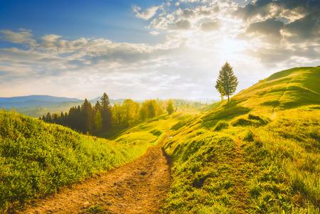 Tôt le matin, dans une vallée des Carpates avec une belle lumière du lever du soleil. Printemps Banque d'images - 40921254