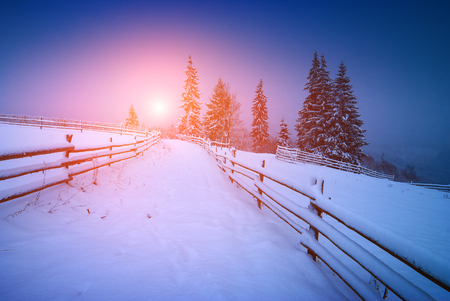 january sunrise: Majestic bright sunrise in a valley covered with fresh january snow. Winter landscape. Carpathian, Ukraine, Europe Stock Photo