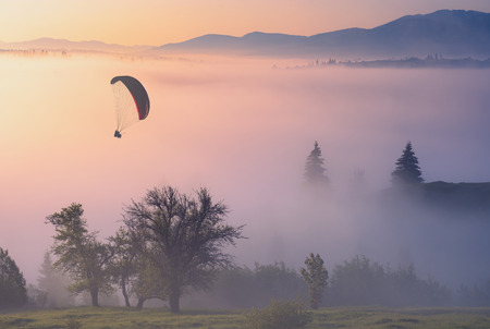 paraglide: Paraglide silhouette in a golden light of sunrise flying above the misty carpathian valley.