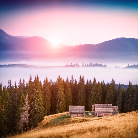 foggy hill: Sunrise above the high montain foggy valley with old wooden houses on a hill in a mountain forest.