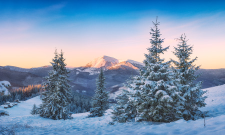 frosty morning: Carpathian mountain valley at winter covered with snow. Ukraine, Europe. Stock Photo