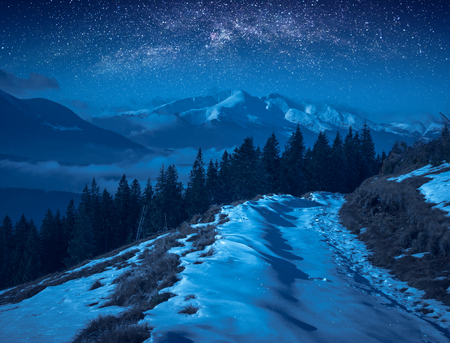 Fairy winter valley covered with snow in a moon light. Milky way in a night starry sky.