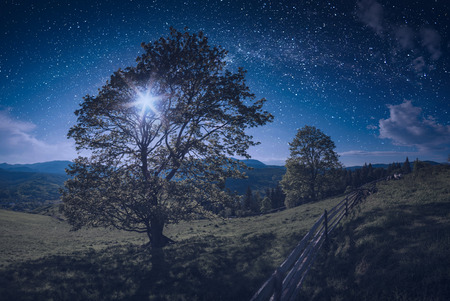 Majestic night in a carpathian valley with beautiful moon light. Panoramic size. Spring time