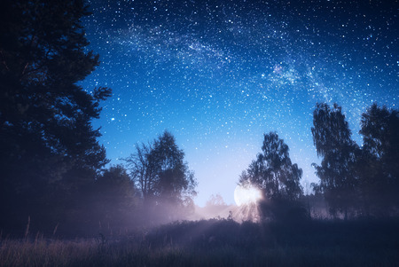 Amazing rising of the full moon in a misty forest. Dreamy landscape.