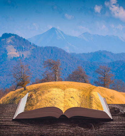 Mountain valley covered with yellow grass on the pages of an open magical book. Majestic landscape. Nature and education concept.
