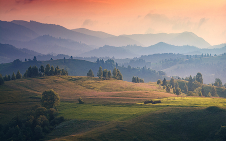 Carpathian hills in a beautiful light of sunset. Spring time