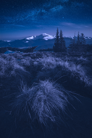 Night in alpine valley with distant snow covered mountains in light of rising moon.