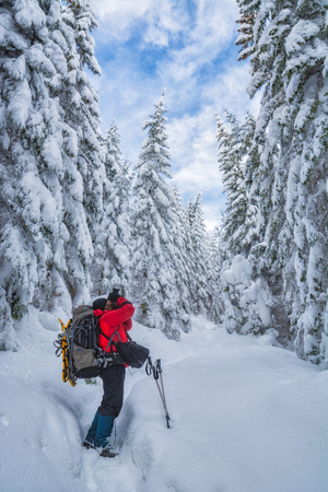 Hiker with big backpack and the camera take a picture of winter forest.