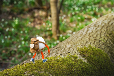 Easter egg hiker with backpack walking by the tree bark in a spring forest. Travel and nature concept. 版權商用圖片 - 121116536