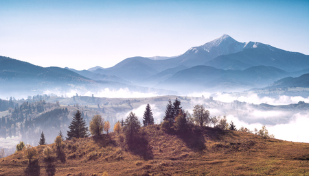 Magnificent panoramic view of mighty carpathian mountains. Beauty of wild virgin Ukrainian nature. 版權商用圖片 - 121116552