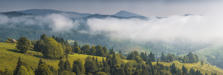Beautiful countryside view of mountain hill at sunrise. Grassy hills and meadows under the low clouds. Various trees on a hillsides. Wonderful nature scenery of Carpathians. Imagens