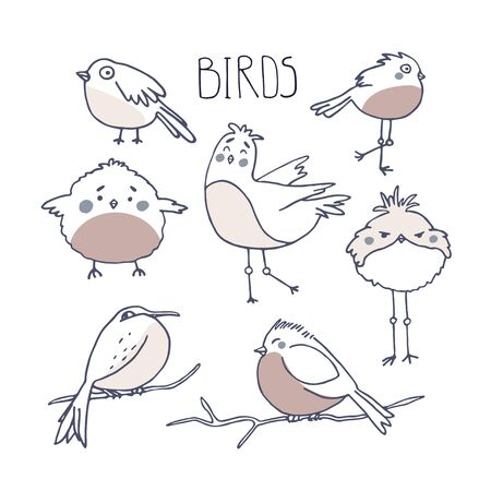 Cute birds, funny cartoon animals in doodle sketch style. Bird watching and ornithology concept. Flat vector illustration witn kawaii characters. Perfect for prints. textile, stickers Ilustração