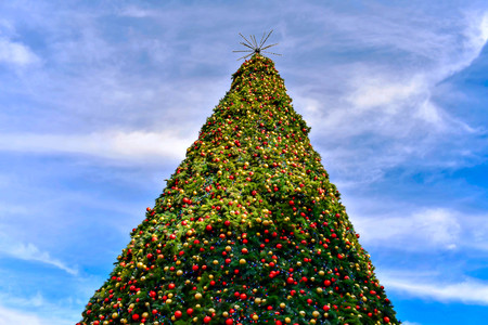 Orlando, Florida . December 24, 2018. Top view of Christmas Tree on bluelight sky background in Lake Eola Park area at Orlando Downtown.