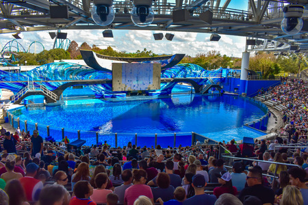 Orlando, Florida, January 01, 2019. People waiting for the start of One Ocean Show with pretty killer whales at Seaworld Фото со стока - 122360796