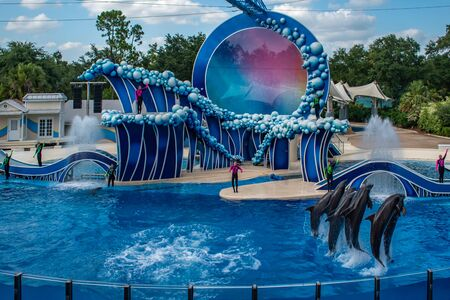 Orlando, Florida. June 23 2019. Dolphins jumping in Touch the Sky Show by Electric Ocean at Seaworld 5