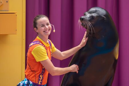 Orlando, Florida. July 26, 2019. Lovable sea lion plays with smiling coach in Sea Lion High show at Seaworld 7