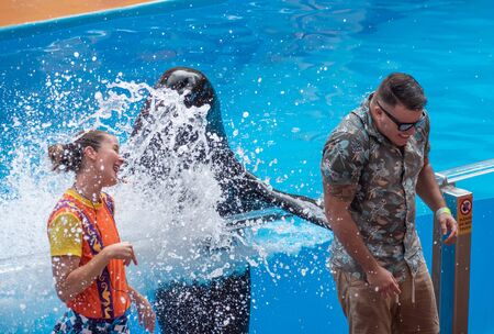 Orlando, Florida. July 26, 2019. Lovable sea lion splashing the public man with his fin in Sea Lion High show at Seaworld 2