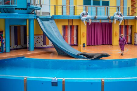 Orlando, Florida. July 26, 2019. Sea lion sliding down slide in Sea Lion High show at Seaworld 1