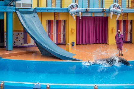 Orlando, Florida. July 26, 2019. Sea lion sliding down slide in Sea Lion High show at Seaworld 2