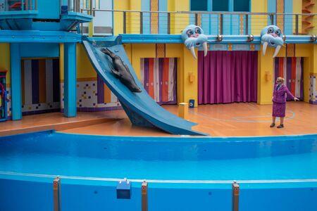 Orlando, Florida. July 26, 2019. Sea lion sliding down slide in Sea Lion High show at Seaworld 3