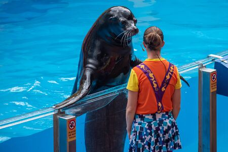 Orlando, Florida. July 26, 2019 Lovable sea lion and woman trainer at Sea Lion High show at Seaworld.